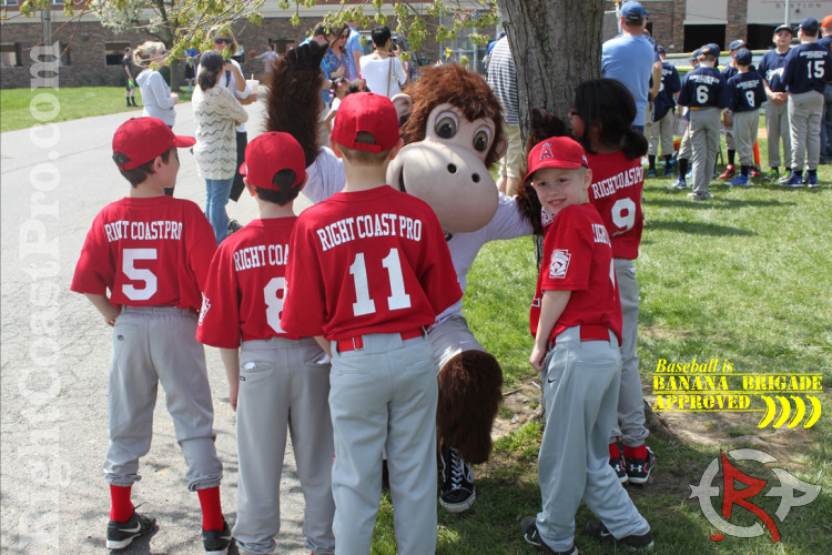Newark American Little League RightCoastPro Delaware Entertainment Sports Events Coastee 5
