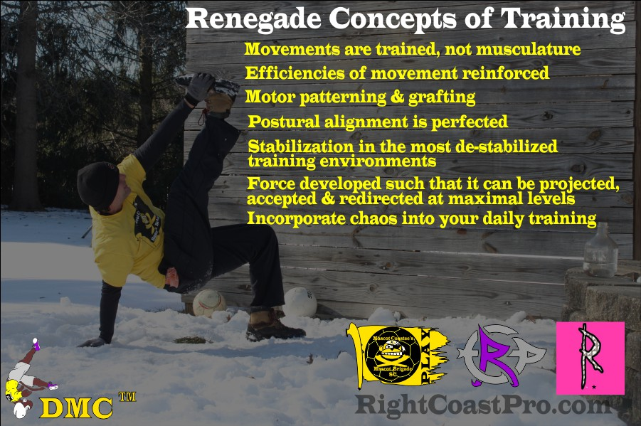 Renegade Concepts of Training